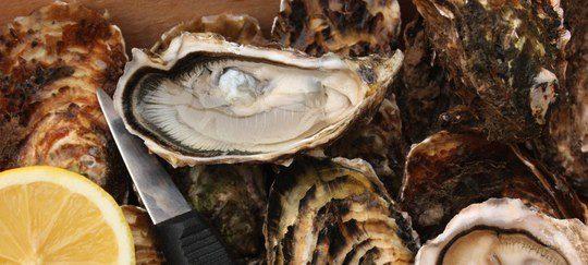 Las ostras, el alimento afrodisiaco por excelencia