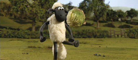 La oveja Shawn