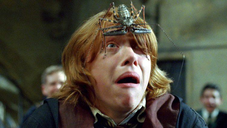 Rupert Grint en un plano de 'Harry Potter'