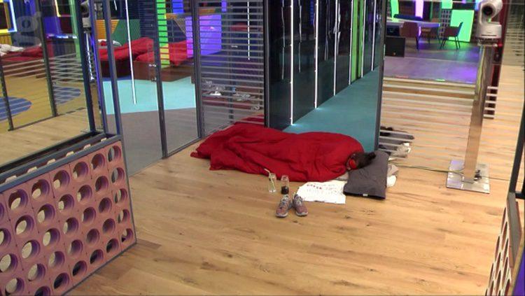Elettra durmiendo en la puerta de la sala de pruebas / El Gato Encerrado