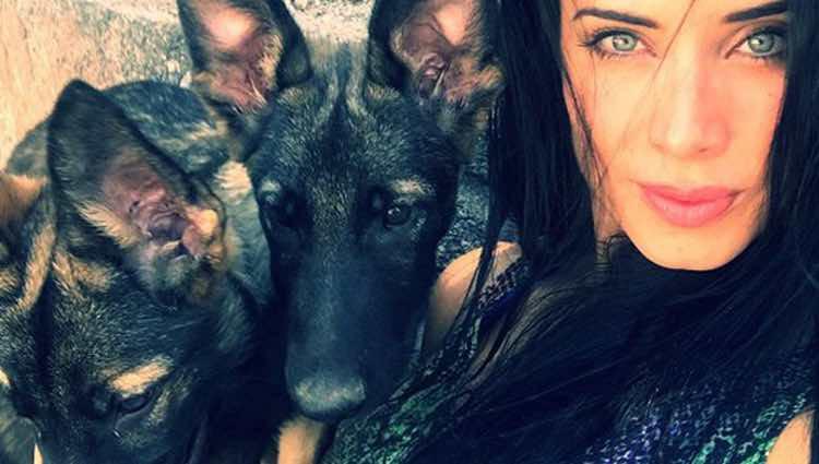 Pilar Rubio posando con los nuevos miembros de la familia / Instagram