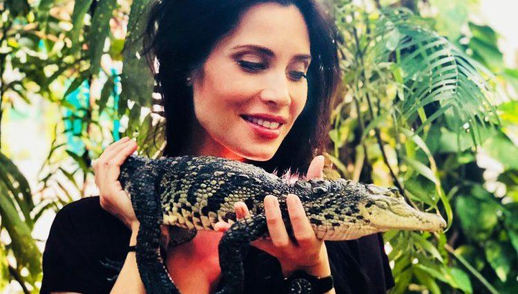 Pilar Rubio con un cocodrilo pequeño / Instagram