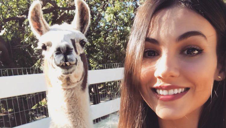 Victoria Justice, de lo más alegre junto a un animal