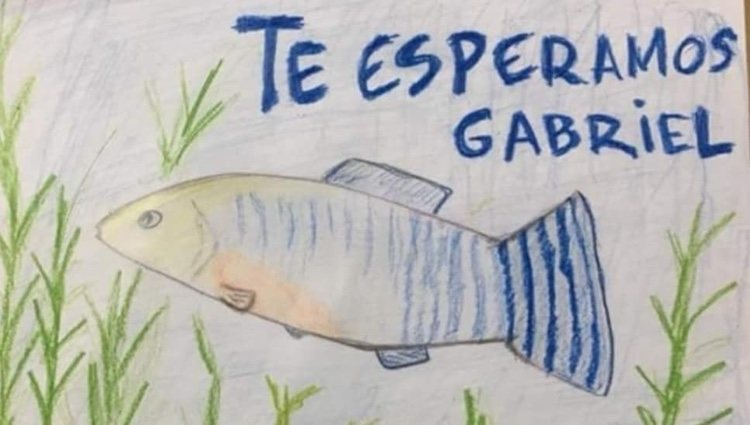 Patricia Pérez publicó este dibujo | Foto: Instagram