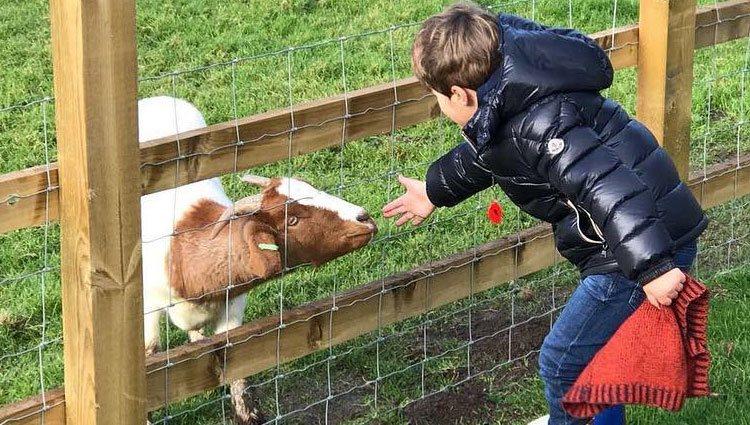 Francisco, el hijo de Kiko Rivera, jugando con un animal / Fuente: Instagram