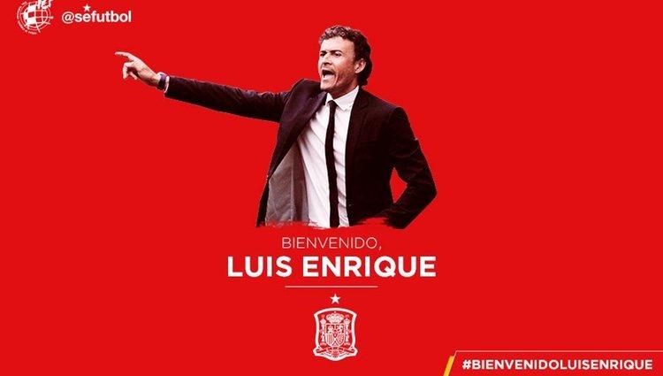El anuncio oficial del fichaje de Luis Enrique por la Selección de España | Fuente: Twitter Real Federación Española de Fútbol