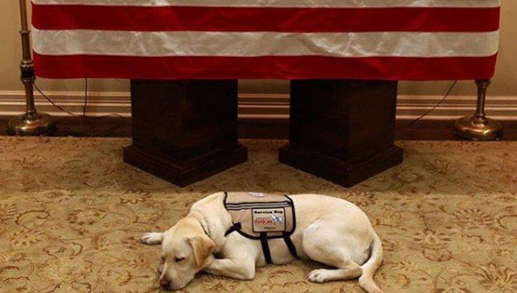 Sully junto al ataúd del expresidente |Foto: Instagram
