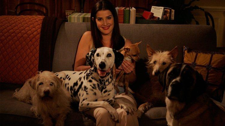 Robin rodeada d sus perros