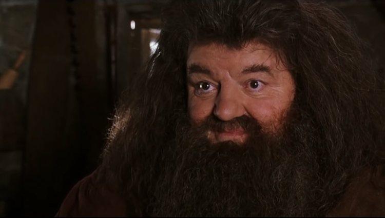 Robbie Coltrane en 'Harry Potter'