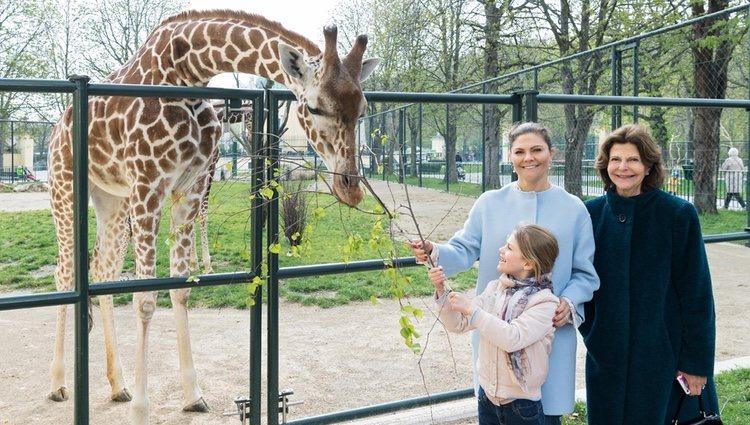 Silvia, Victoria y Estela de Suecia en el zoo de Viena | Foto: Daniel Zupanc/Facebook