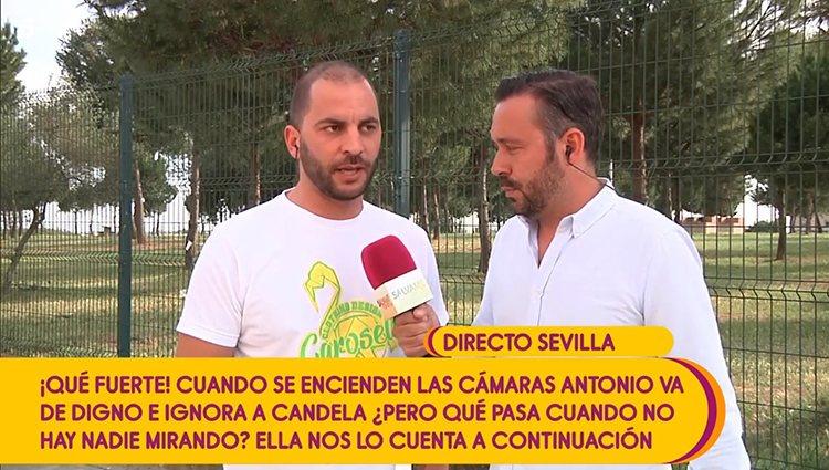 Antonio Tejado en 'Sálvame' | Foto: Telecinco.es
