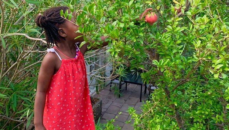Jackson, la hija de Charlize Theron, cogiendo manzanas en sus vacaciones Foto: Instagram @charlizeafrica