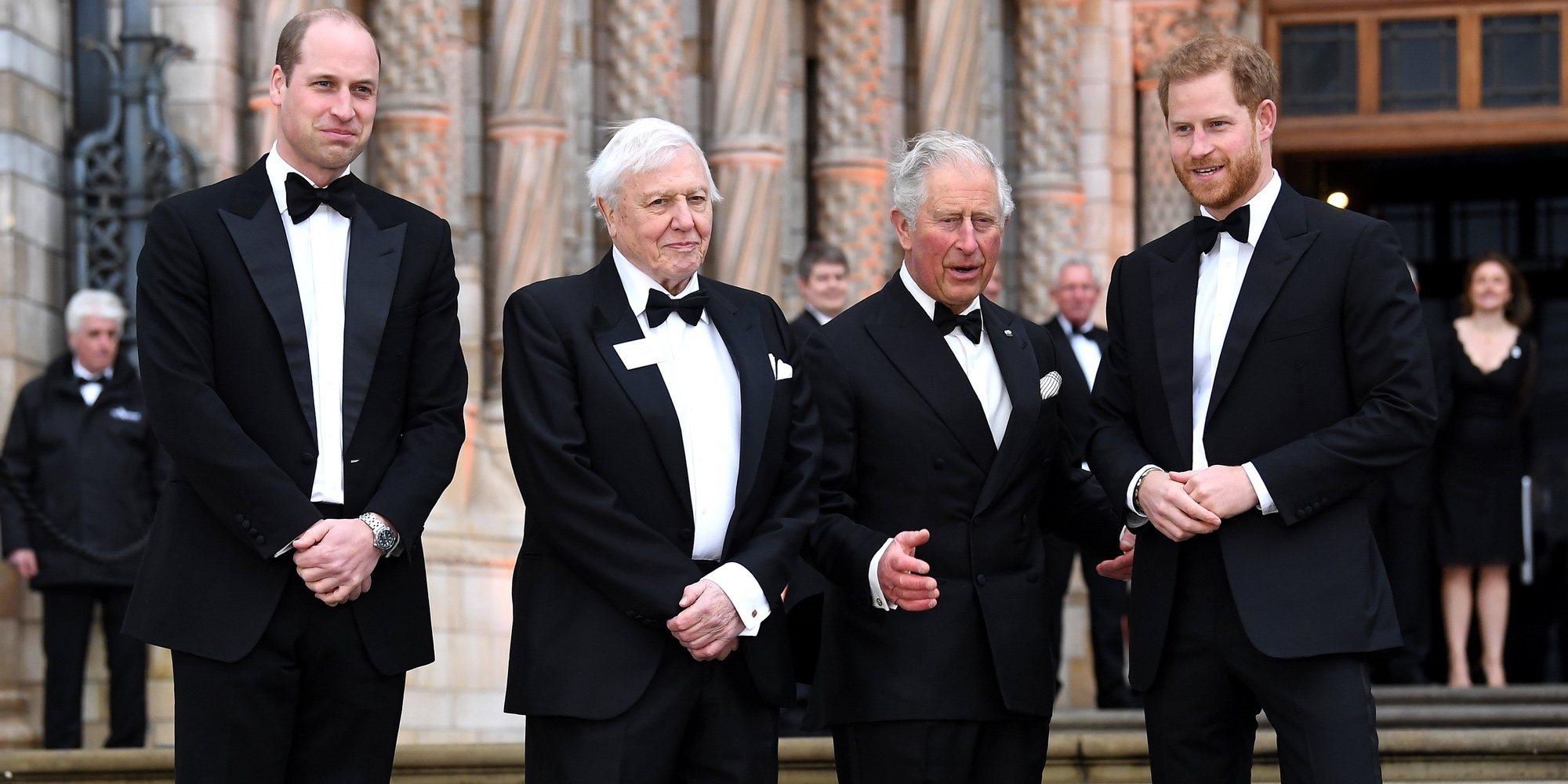 'Nuestro Planeta' es el documental de Netflix favorito de la Familia Real Británica y también debería ser el tuyo