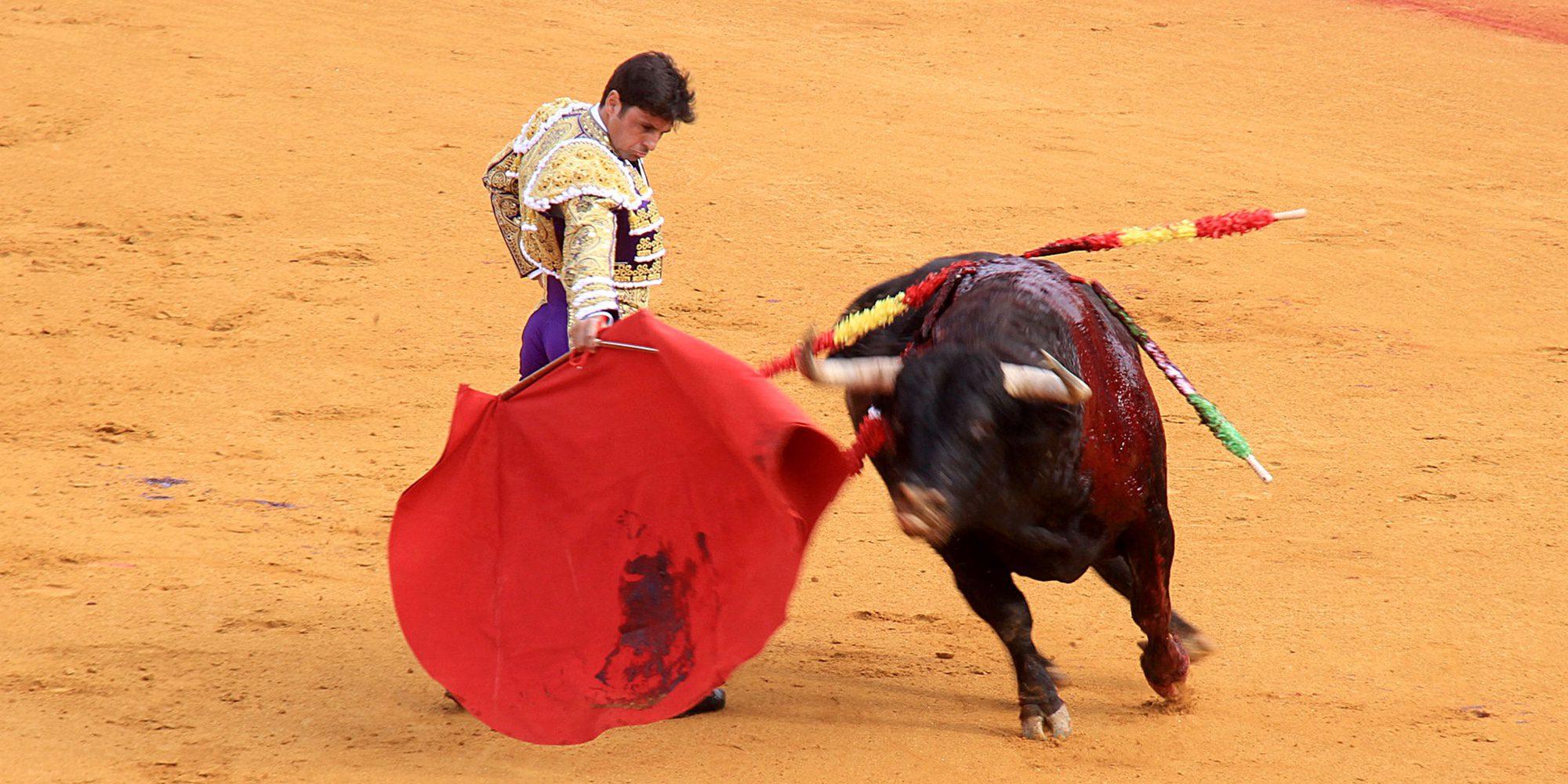 """Fran Rivera agradece el capote de Froilán: """"Todos los que amamos el toreo estamos tremendamente agradecidos"""""""