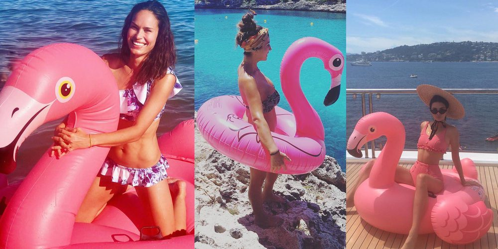 Paula Echevarría, Sofía Vergara, Justin Bieber....los famosos se apuntan a la moda del flamenco rosa