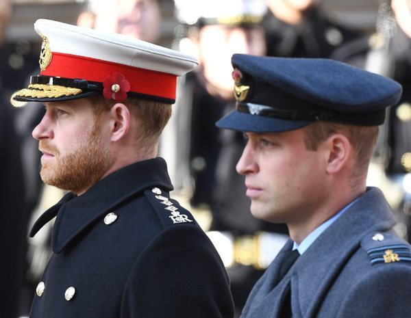 Los Príncipes Harry y Guillermo, indignados por un documental que habla de los suicidio de Lady Di