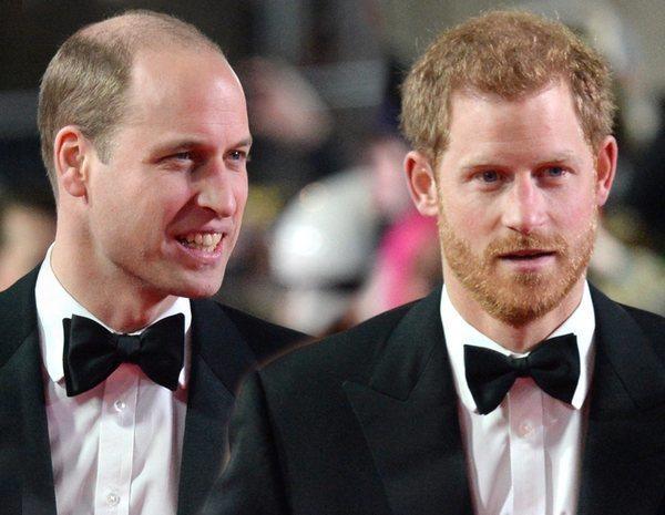 Los Príncipe Harry y Guillermo, también en desacuerdo por un homenaje e a su madre, Lady Di