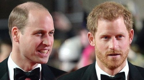 Los Príncipe Harry y Guillermo, también en desacuerdo por un homenaje a su madre, Lady Di