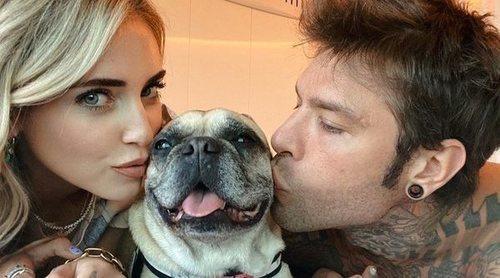 Chiara Ferragni lo deja todo y viaja a Zurich para que su mascota, Matilda, sea tratada de un cáncer cerebral