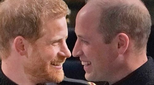 La mención del Príncipe Harry al Príncipe Guillermo en su intervención en los Diana Awards en recuerdo a Lady Di