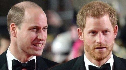 Los mensajes del Príncipe Guillermo y el Príncipe Harry por una pasión compartida antes de su homenaje a Lady Di