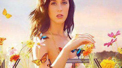 Katy Perry, Lorde o Robin Thicke, primeras actuaciones confirmadas de los Premios Grammy 2014