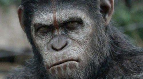 'El amanecer del planeta de los simios' destaca entre los estrenos de cartelera