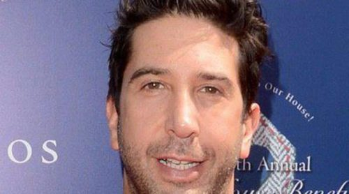 Es david schwimmer gay