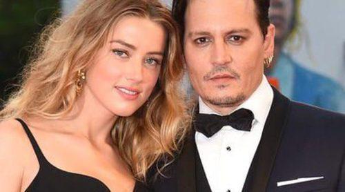 Johnny Depp y Amber Heard se disculpan en un vídeo por la entrada ilegal de sus perros en Australia