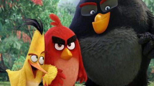 'Angry Birds. La película' y 'La Bruja': En busca del éxito en la taquilla española