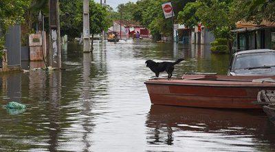 Héroe: Un hombre salva de morir ahogados a una mujer y su perro en las inundaciones de Luisiana
