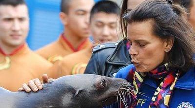 Del estilo de la Reina Letizia en Fitur al beso de Estefanía de Mónaco a una foca en el circo