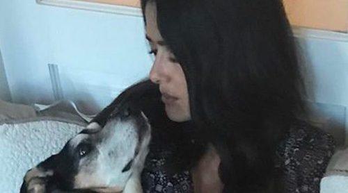 Salma Hayek despide llena de tristeza a su gran compañera de vida, su perrita Lupe