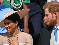 Una abeja eclipsa la primera aparición oficial del Príncipe Harry y Meghan Markle tras su boda