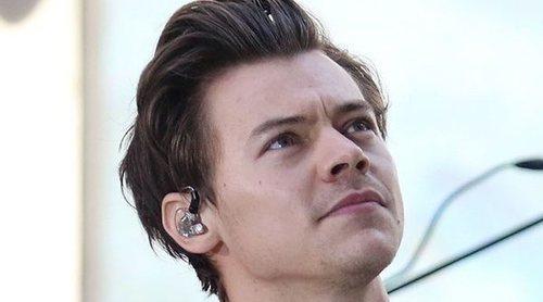 Harry Styles parece haber encontrado de nuevo el amor con otra modelo