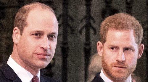 El Príncipe Harry marca distancias y abandona la fundación que creó con el Príncipe Guillermo