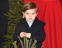 Oscar de Suecia, todo espontaneidad en la tradicional recogida del árbol de Navidad para la Familia Real Sueca
