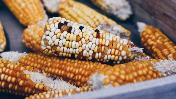 En 1885 se patentó la primera máquina para hacer palomitas de maíz