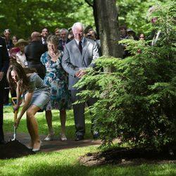 Catalina de Cambridge planta un árbol en Canadá