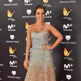 Paula Echevarría en la alfombra roja de los Premios Feroz 2017