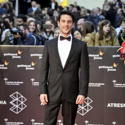 Alejo Sauras en la gala de clausura del Festival de Cine de Málaga