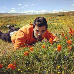 Taylor Lautner rodeado de amapolas