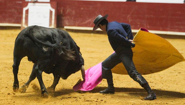 Fran Rivera practicando su pasión, el toreo