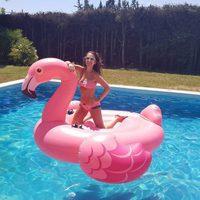 Paula Echevarría posando muy sonriente con el famoso flamenco rosa