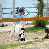 Froilán jugando con unos perros