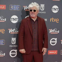 Pedro Almodóvar en los Premios Platino 2017