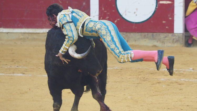 El torero Cayetano Rivera herido en las fiestas del Pilar en Zaragoza