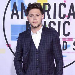 Niall Horan en los American Music Awards 2017
