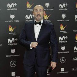 Javier Cámara en la alfombra roja de los Premios Feroz 2018