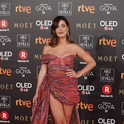 Dulceida en la alfombra roja de los Premios Goya 2018